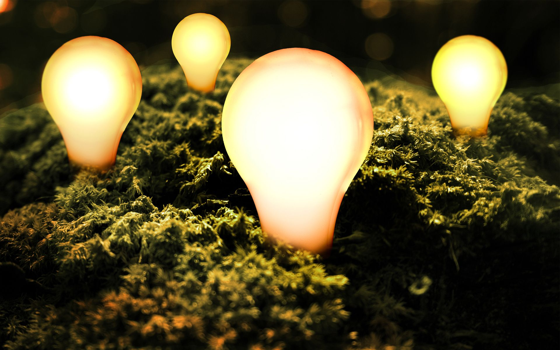 Sfondi hd energia pulita sfondi hd gratis for Photo hd gratuite