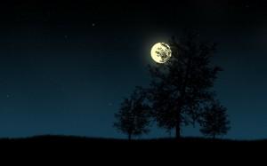 Sfondi HD gratis - la notte