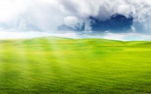 Sfondi desktop paesaggi estivi HD - prati verdi