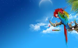 Sfondi HD animali pappagallo - immagine desktop