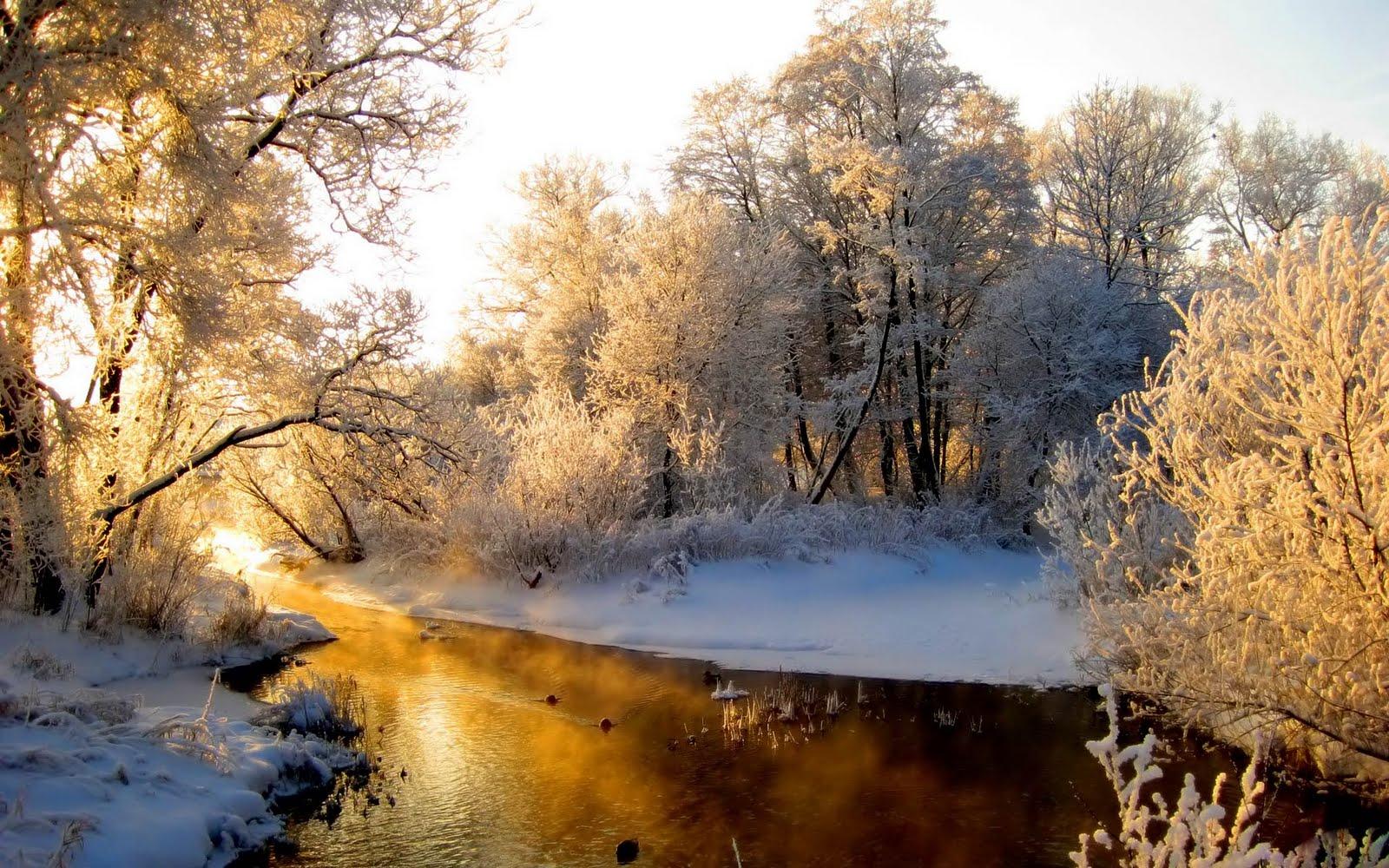 Sfondi desktop 3d paesaggio hd innevato sfondi hd gratis for Paesaggi invernali per desktop