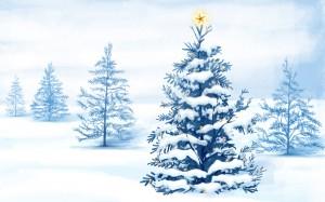 Sfondi desktop HD Natale 2013 - alberi di natale