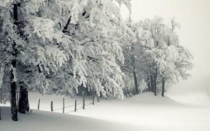 Sfondi desktop HD Natale gratis - neve