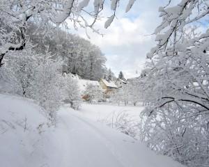 Sfondi desktop HD Natale - neve