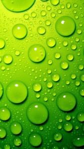 Sfondi iphone 5 gratis - verde rugiada