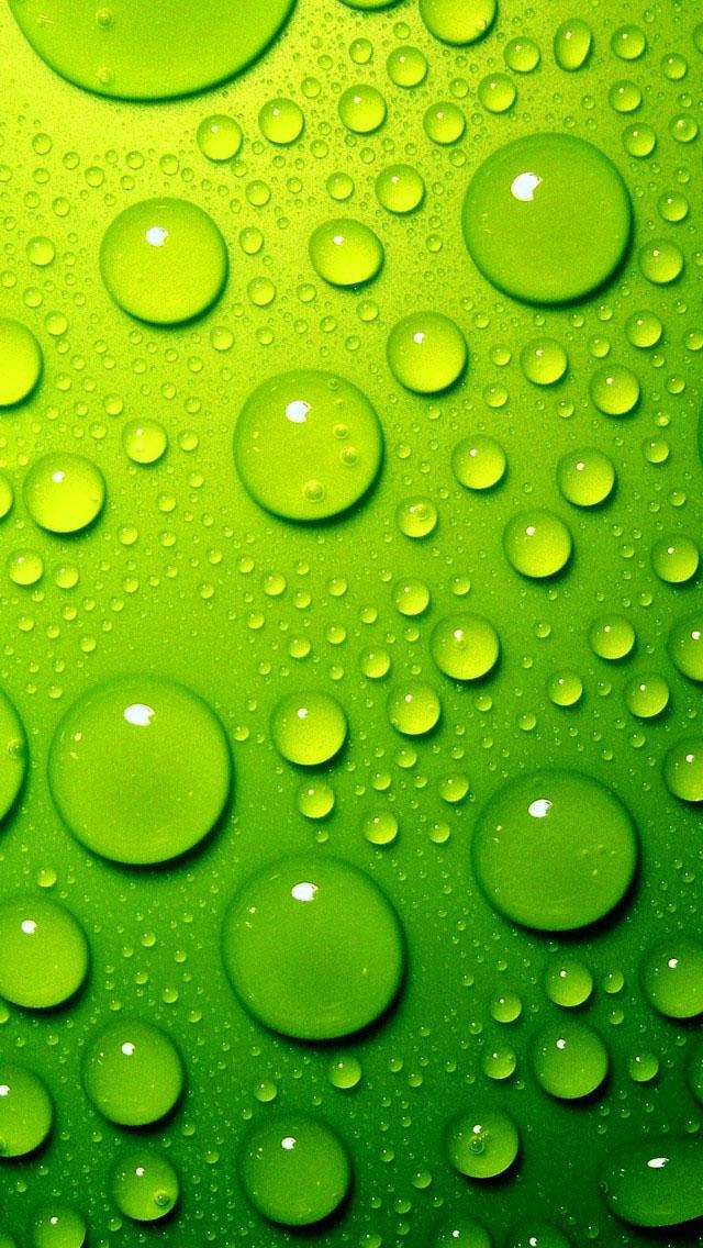 Sfondi Iphone 5 Gratis Verde Rugiada Sfondi Hd Gratis