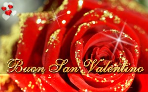 Sfondi amore e san valentino per desktop - rosa rossa