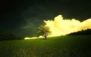 Sfondi HD natura - paesaggio bucolico