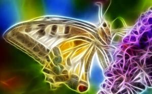 Sfondi animali frattali HD - farfalla