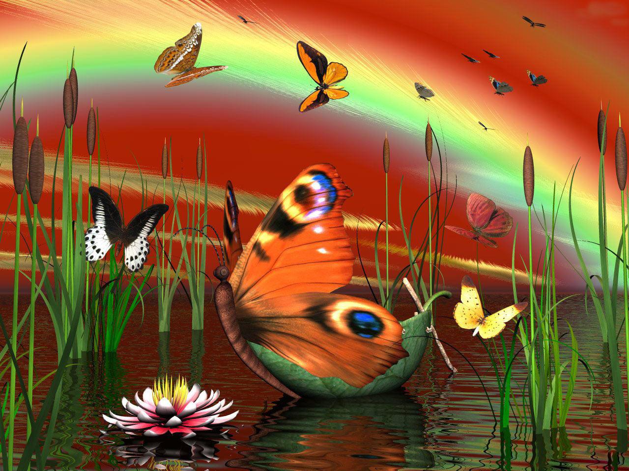 Sfondi desktop farfalle hd sfondi hd gratis for Sfondi pc in 3d
