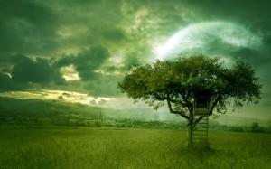 Sfondi paesaggi HD - casa sull'albero