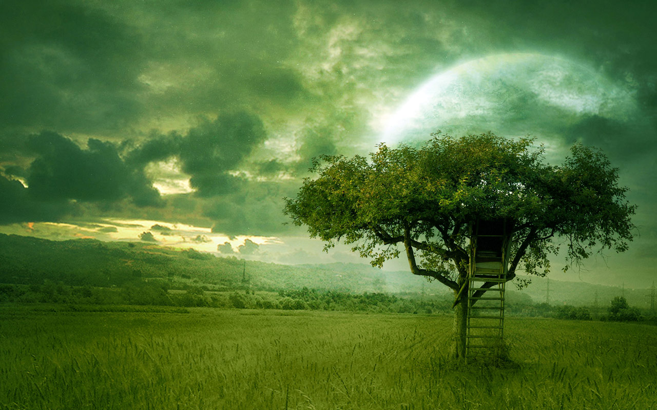 Sfondi paesaggi hd casa sull 39 albero sfondi hd gratis for Sfondi desktop hd paesaggi