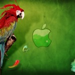 HD parrot and apple for mac wallpaper