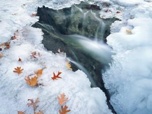 Sfondo HD inverno bellissimo - paesaggio dai ghiacci