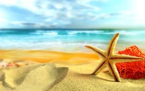 Sfondi HD spiaggia estate e stella marina