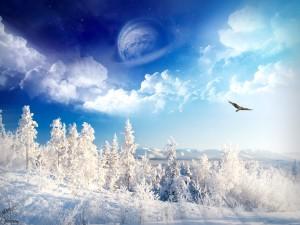Sfondi HD paesaggio neve bellissimo