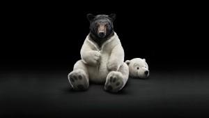 Sfondo HD orso travestito
