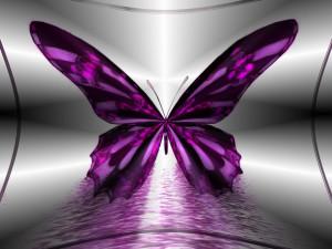 Sfondo farfalla viola