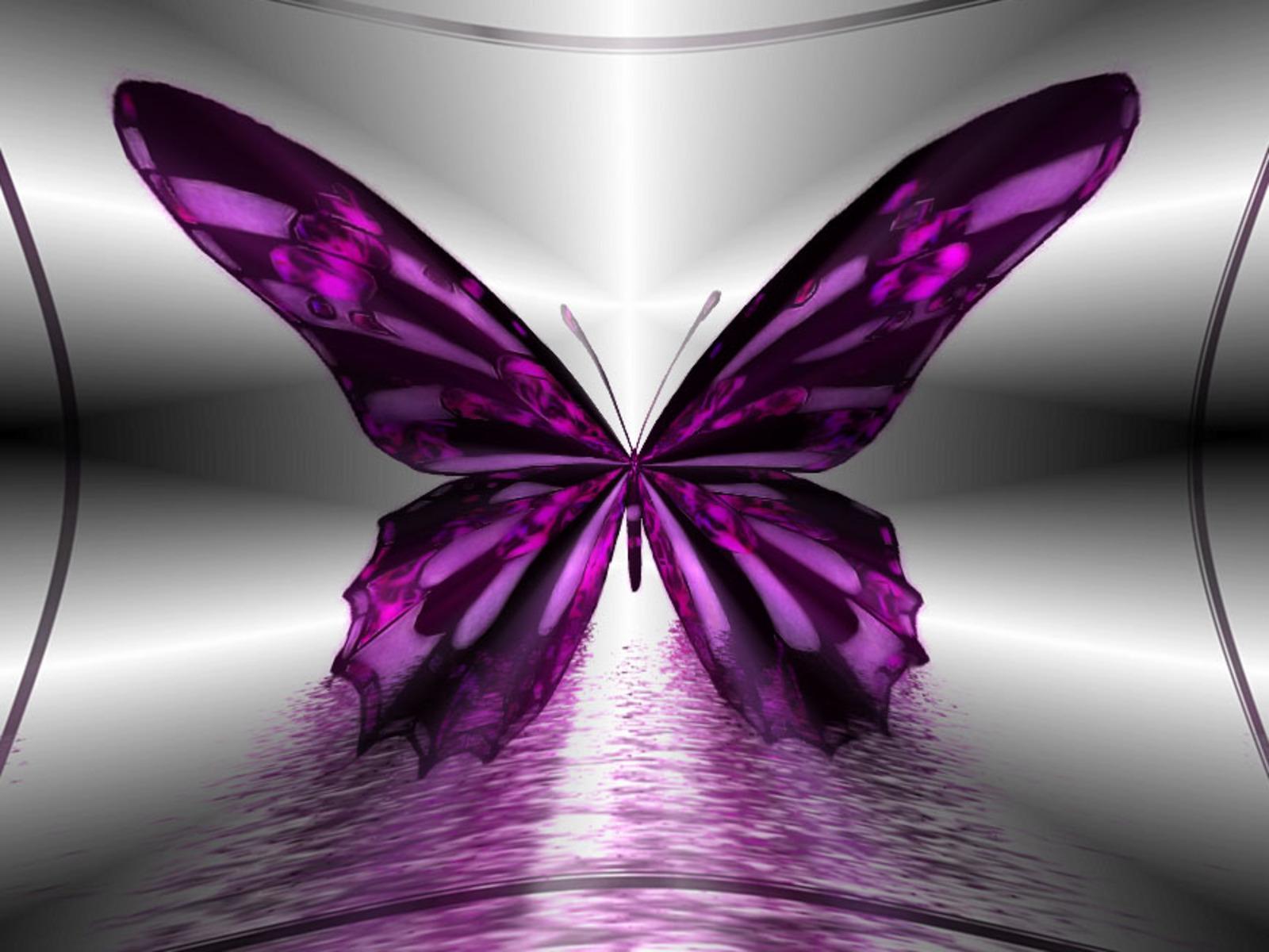 Sfondo farfalla viola sfondi hd gratis for Sfondi hd viola
