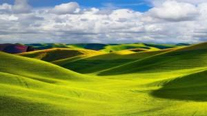 Sfondo HD paesaggio campi coltivati