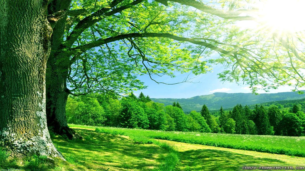 Sfondo hd paesaggio naturale relax sfondi hd gratis for Photo hd gratuite