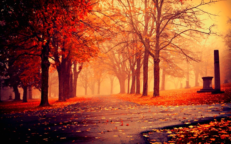 Sfondo retina hd autunno sfondi hd gratis for Immagini autunno hd