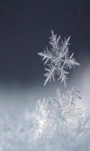 Sfondo iphone 6 fiocco di neve