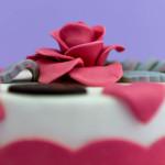 Cake design torta