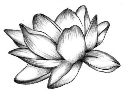 Tattoo fiore di loto sfondi hd gratis for Disegni facili da riprodurre