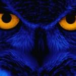 Sfondo-gufo-blu