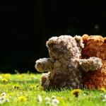 Sfondo teddy orsacchiotti innamorati